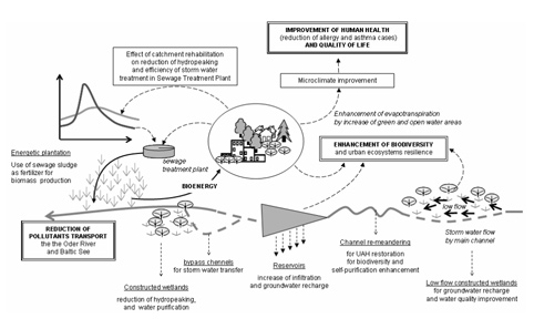 Rehabilitation of a municipal river: an example of possible multidimensional benefits for the urban environment and the society