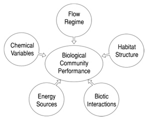 Factors influencing biological community performance (Yoder, 1989)